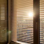 Venetian Blinds for Windows